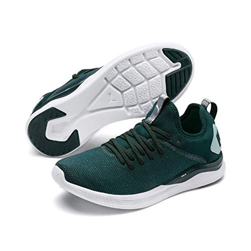 Puma Damen Ignite Flash Evoknit SR WN's Laufschuhe